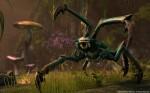 Dreugh Screenshot - The Elder Scrolls Online (TESO)