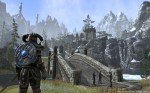 Skyrim Environment Screenshot - The Elder Scrolls Online (TESO)