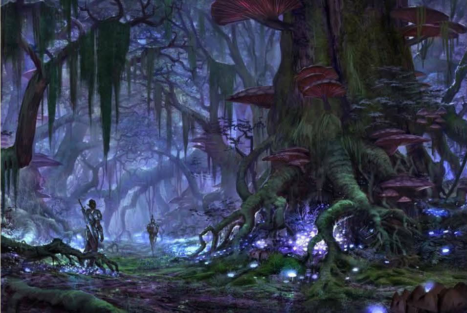 The Elder Scrolls Online Concept Art - Forest