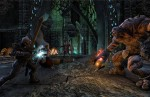 Flesh Atronach Screenshot - The Elder Scrolls Online
