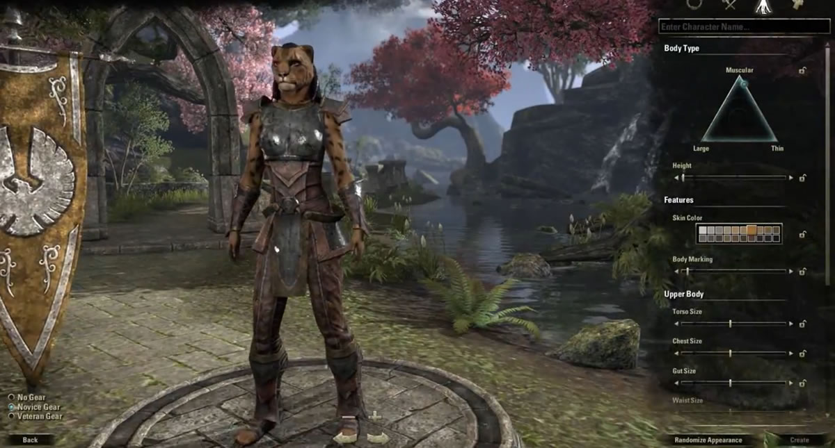 Character Creation and Customization Options