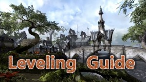 Leveling Guide & Tips