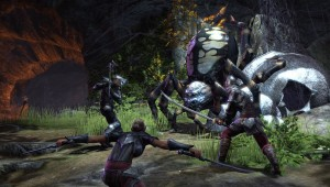 Nightblade: Siphoning Skill Line - PvE Combat