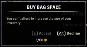Buying inventory slots