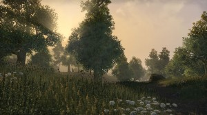 Cyrodiil-screenshot-07