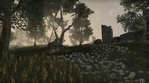 Cyrodiil-screenshot-08