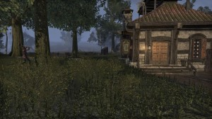 Cyrodiil-screenshot-10