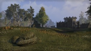 Cyrodiil-screenshot-11