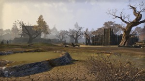 Cyrodiil-screenshot-17