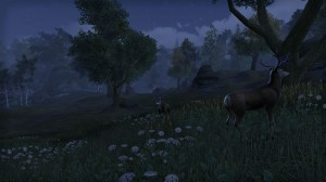 Cyrodiil-screenshot-23