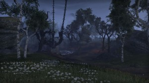 Cyrodiil-screenshot-25