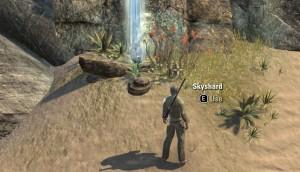 Skyshard