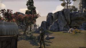 Samurai-armor-heavy-screenshot