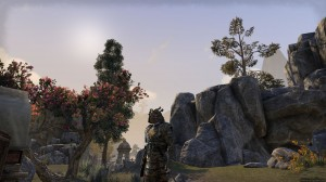 Samurai-heavy-armor-screenshot-2