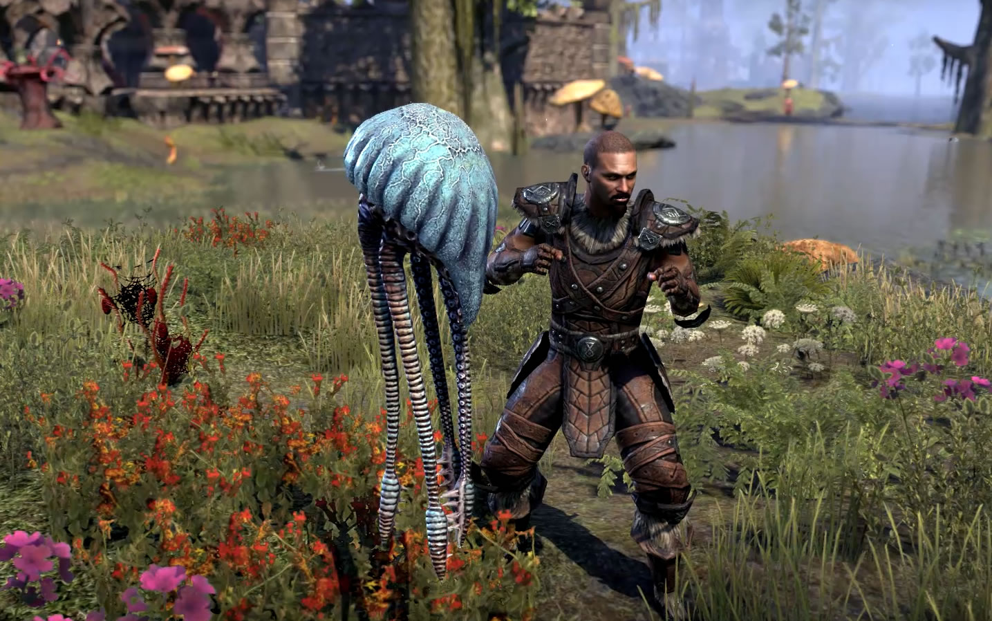 Warden Class Guide | Elder Scrolls Online Guides